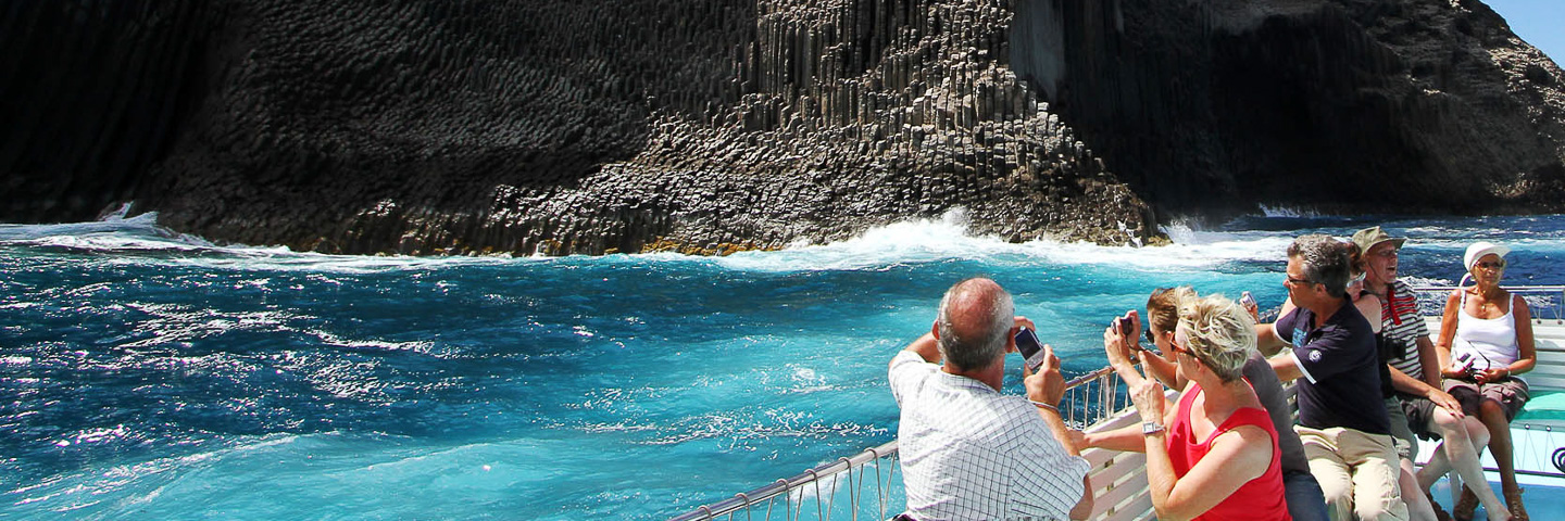 Excursiones Tina: Whale Watching vor La Gomera